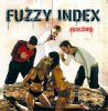 FUZZY INDEX - Insecure